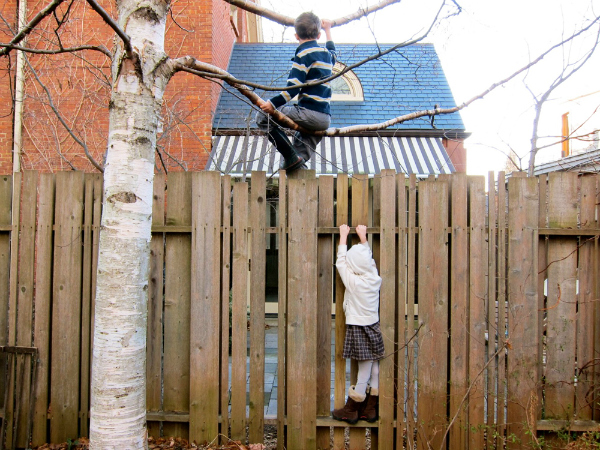 Amazing Fencing childproof fencing