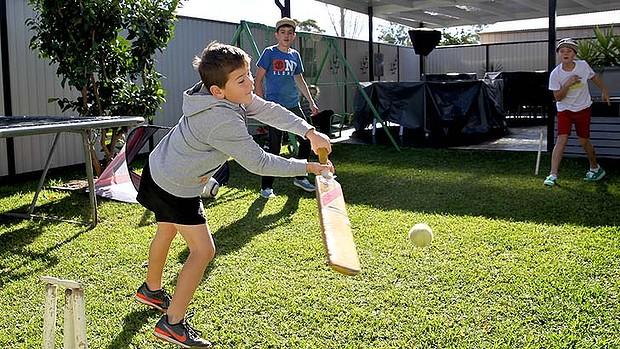 Backyard cricket fencing
