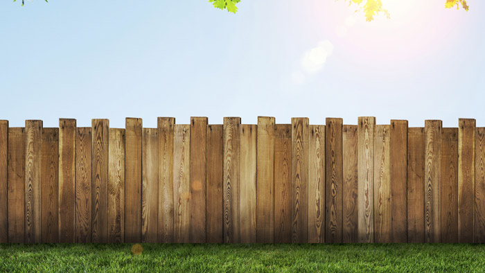 Fence in summer