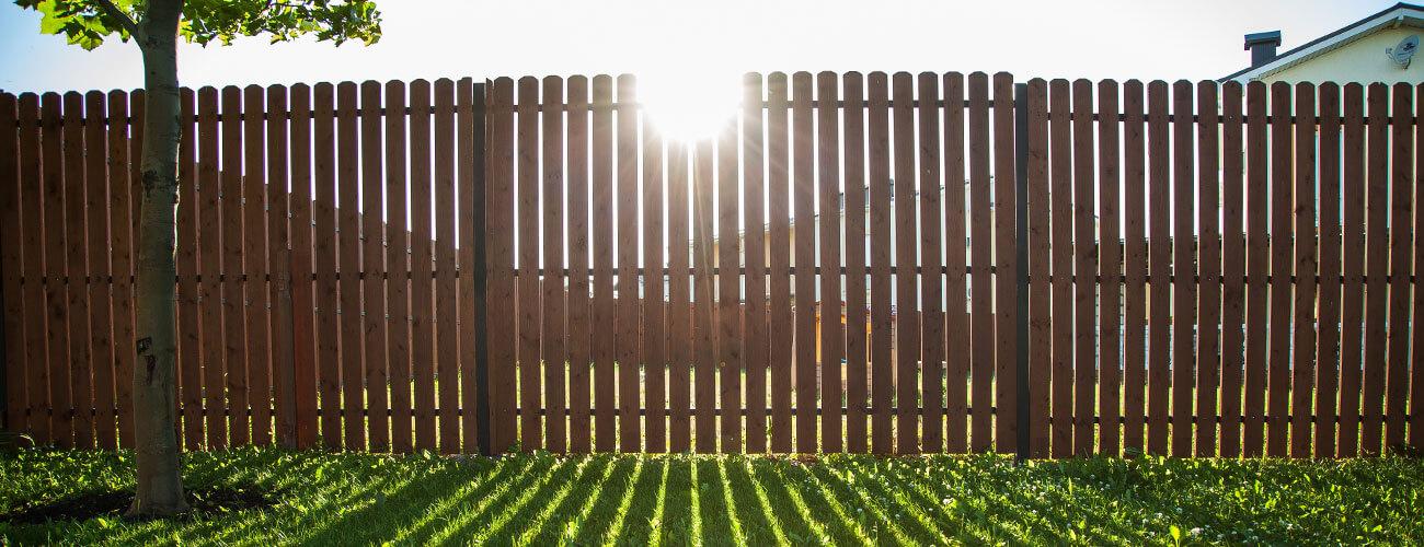 Sun shining through a wooden fence onto a grass lawn