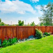 Beautiful Well Maintained Timber Fence in Full Sun