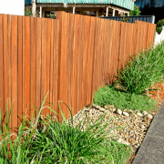 Timber fence with hedge plants against it