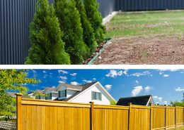 steel fencings or wood fencing